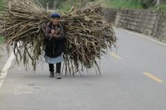 Der Straßenverkehr ist vielfältig